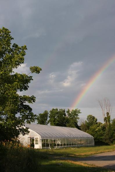 gh rainbow