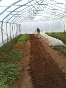 Eby Seeding